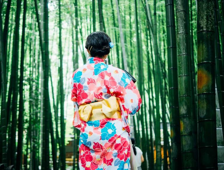 pexels-geisha-done