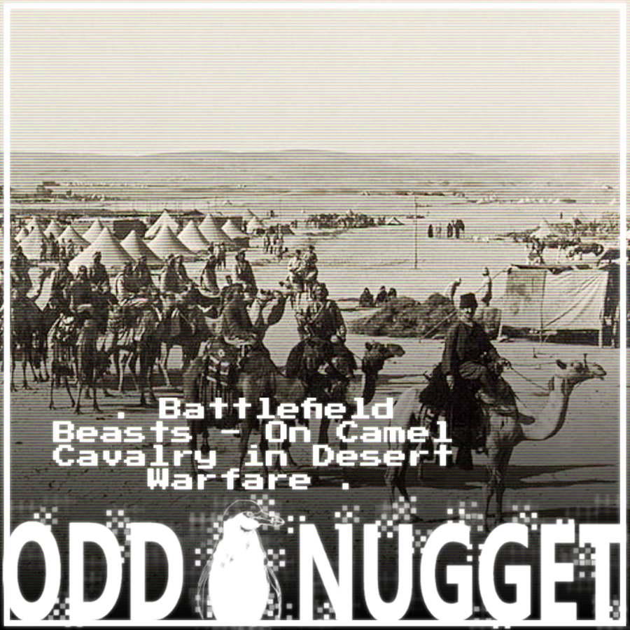 Odd Nugget desert warfare camelry