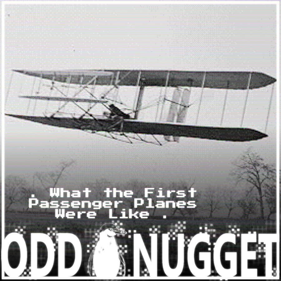 Odd Nugget wright brothers