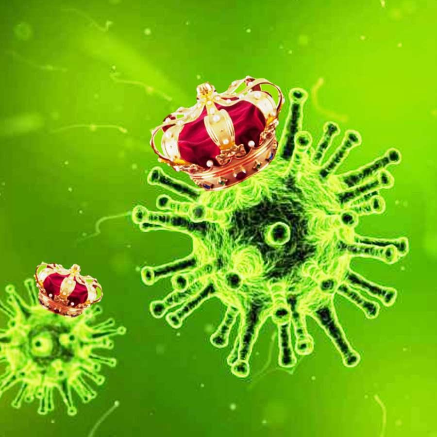 coronavirus odd nugget