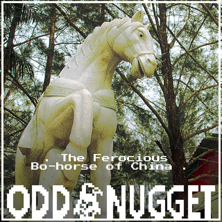 Odd Nugget bo-horse