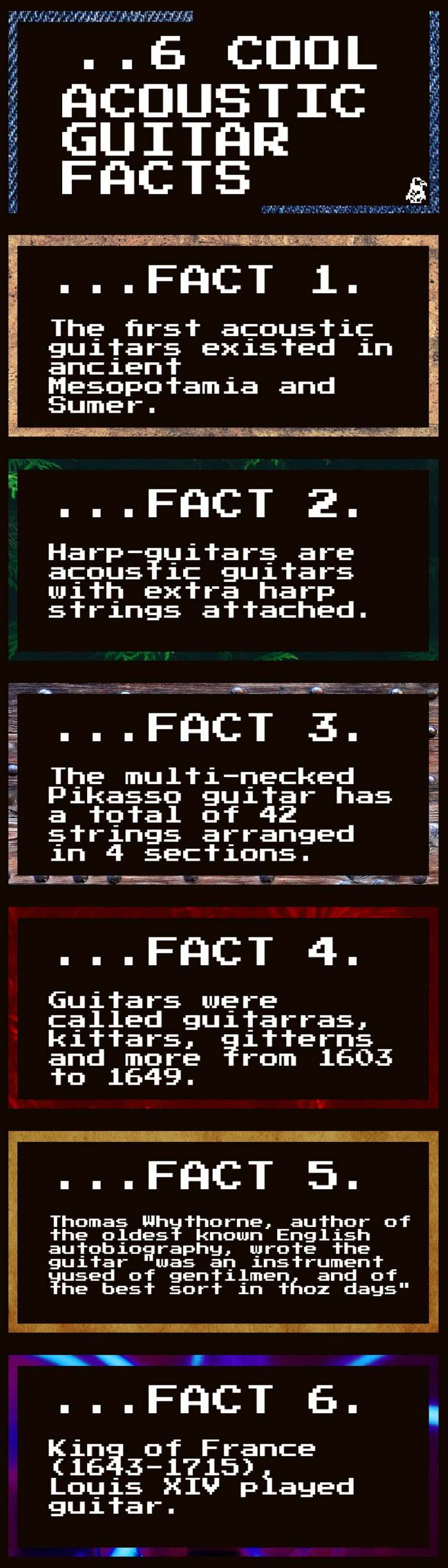 acoustic guitar facts